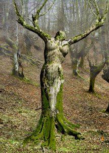 Holla – Göttin des Ursprungs